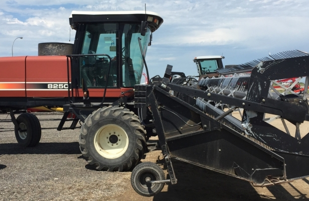 2001 Hesston 8250 Windrower with 30' draper header
