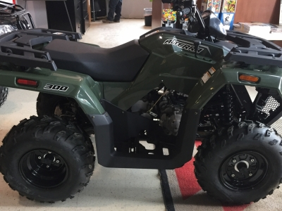 2017 Arctic Cat Alterra 300 ATV